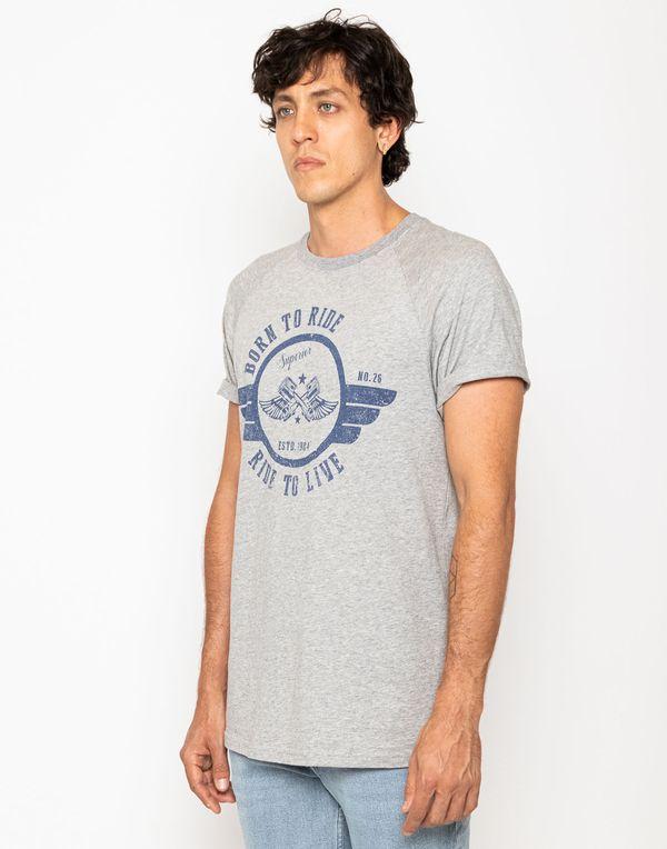 camiseta-113773-gris-1.jpg