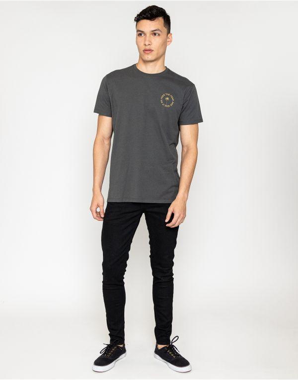 camiseta-114107-gris-2.jpg