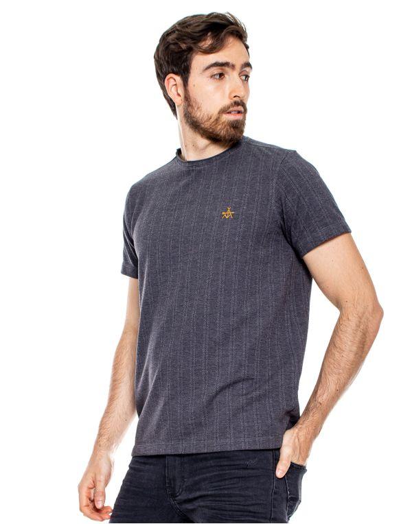 camiseta-114113-gris-2