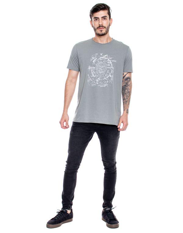 camiseta-122308-gris-2