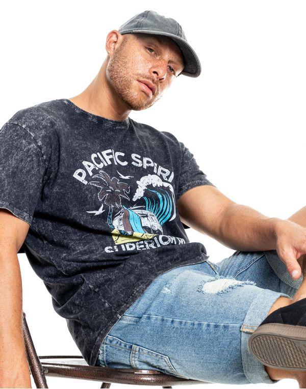 camiseta-122329-gris-2.jpg
