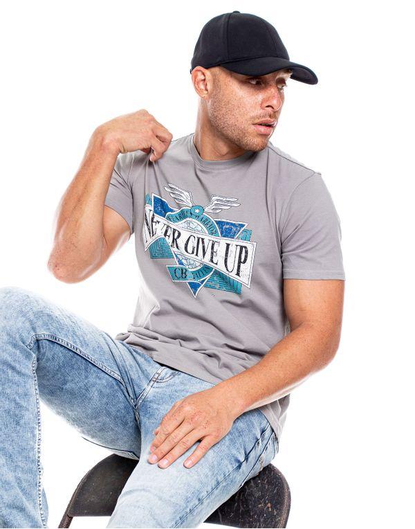 camiseta-132302-gris-2.jpg